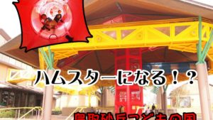 遊び心がすごい!「鳥取砂丘こどもの国」は天井裏を歩けるぞ!