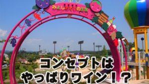 みよし運動公園「みよしあそびの王国」の大型遊具が凄い!三次市の公園